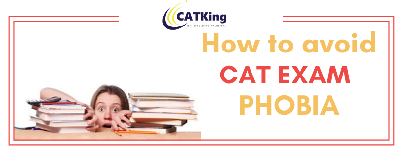 catkign cover how to avoid cat phobia